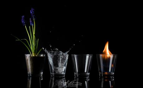 De 4 Elementen.
