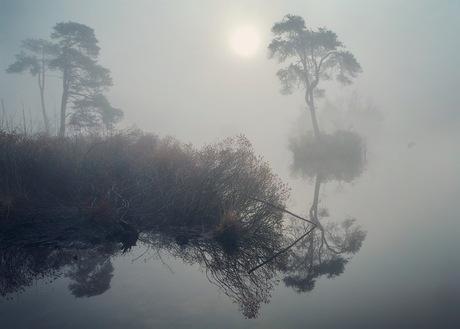 'Zenday' morning