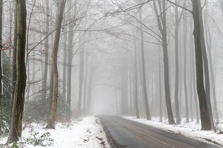 Sneeuw en mist