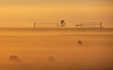 fietsen in de mist 4