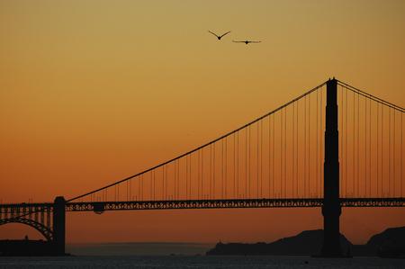 Sunset Golden Gate - De Golden Gate Bridge in november 2008 gefotografeerd.  Let op de 2 pelikanen en het vuurtorenlicht op de achtergrond. - foto door johanjonk_zoom op 08-02-2009 - deze foto bevat: zonsondergang, golden, gatebridge