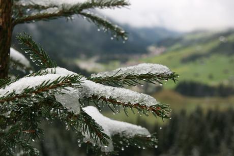 Sneeuw in zomer