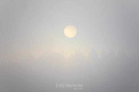 Sunrise on a foggy morning - We waren deze ochtend onderweg om te wandelen in het Evertsbos toen de zon (welke net boven de bomen uit kwam) een klein beetje door de dichte laag m - foto door eddy-reynecke op 24-12-2020 - deze foto bevat: lucht, wolken, zon, natuur, licht, winter, landschap, mist, bos, tegenlicht, zonsopkomst, bomen