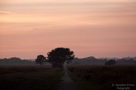 zonsondergang heide