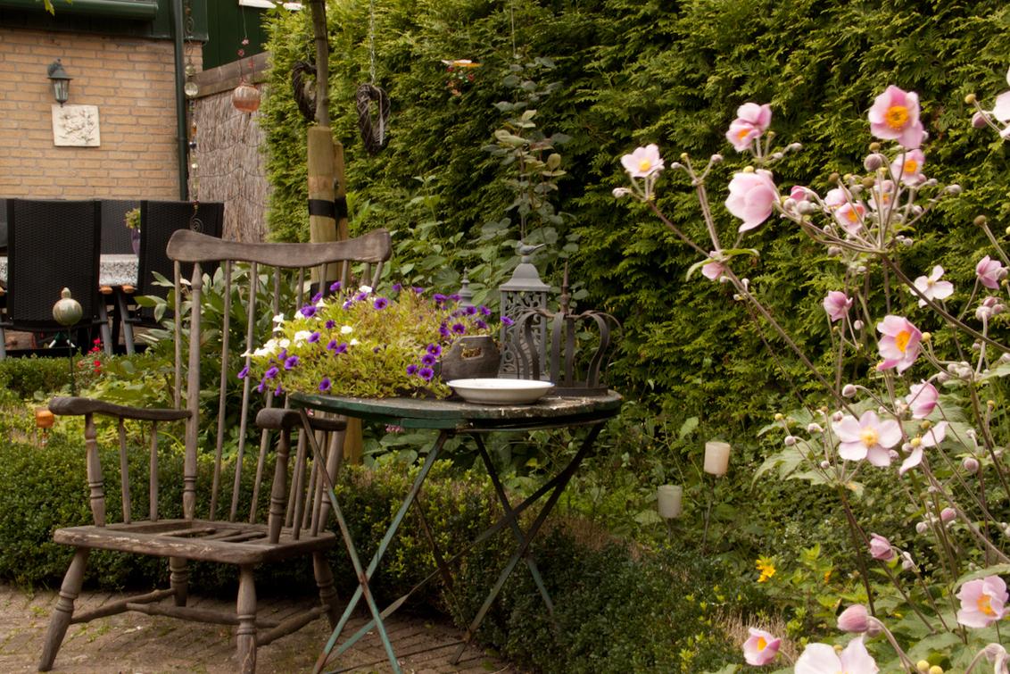 Heerlijk stekje - Een heerlijk stekje in de tuin.  Het is eigenlijk een hele normale foto.. maar vond hem zelf zo mooi om hem met jullie te delen..  In deze stoel  - foto door Roy.vanOmmen op 17-08-2011 - deze foto bevat: roze, bloem, lente, natuur, geel, herfst, winter, zomer, stoel, lelystad, statief, stekkie, heg, 500d