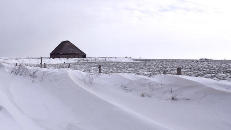 Nog eentje dan: Sneeuw-golven