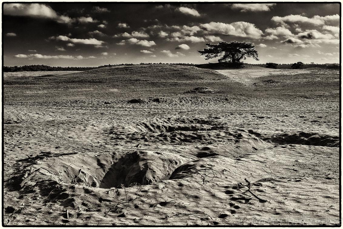 kootwijkerzand - geen - foto door karelwillemse op 09-02-2014 - deze foto bevat: natuur, landschap, kootwijkerzand, polarisatiefilter, zwart wit