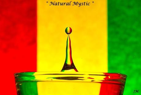 NaturalMystic1.1