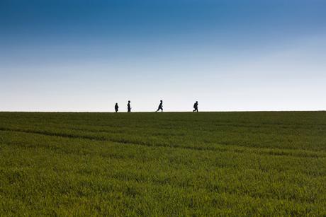 Kids on the horizon