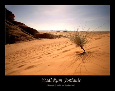 Wadi Rum 2 (Jordanië)