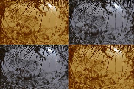 Bubbles - Een foto van een weerspiegeling in het water ! - foto door 005 op 26-06-2015 - deze foto bevat: eenvoud, bewerking, creatief, komisch