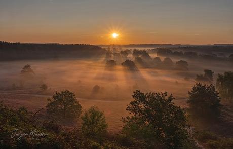 Mystical morning.