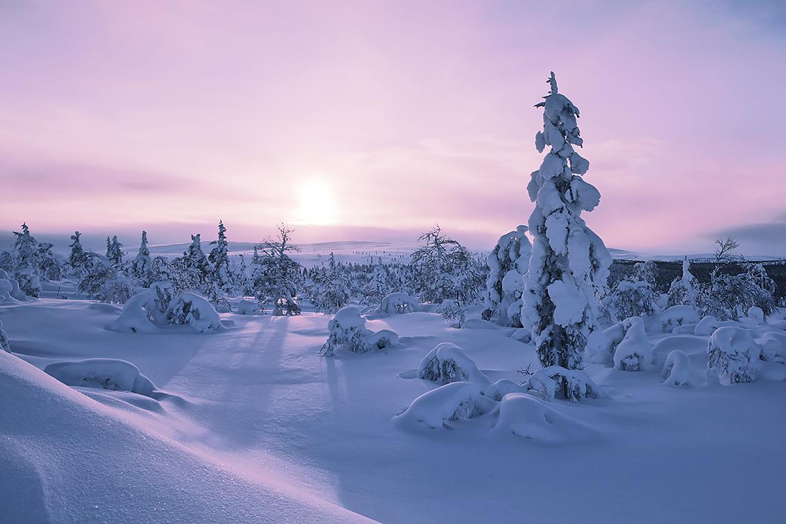 Zonsopkomst in Fins Lapland - gemaakt tijdens Zoom.nl lezersreis februari 2016 - foto door hanskl op 17-03-2016 - deze foto bevat: zon, landschap, zonsopkomst, finland, lapland, lezersreis, Zoom.nl
