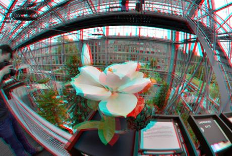 Hortus Leiden Rokinon 8mm 3D