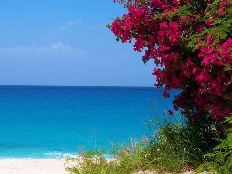 Karakter - beach