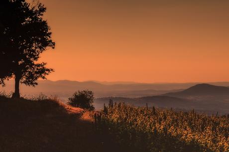 Avond in Toscane