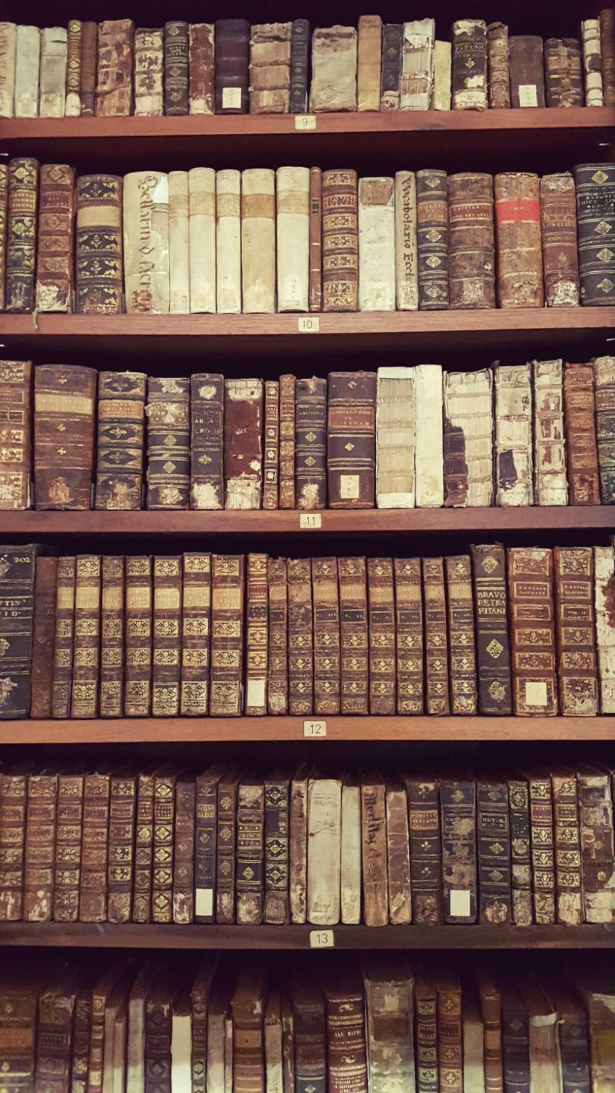The old library - Oude boeken uit een grijs verleden - foto door Bianca-101 op 03-08-2019 - deze foto bevat: bewerkt, bewerking, nostalgie, cultuur, boeken, creatief, filter, boekenkast - Deze foto mag gebruikt worden in een Zoom.nl publicatie