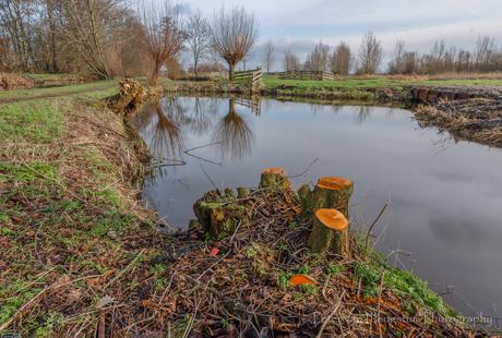 Struinen in de polder