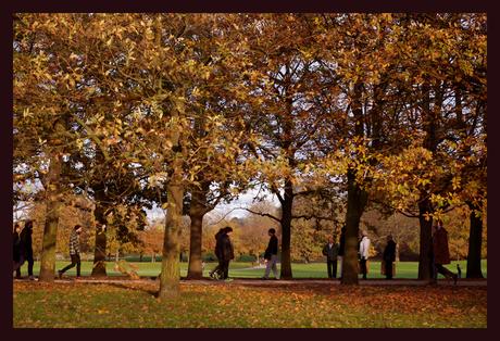 Autum walk in Greenwich Park