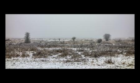 """Winter - Markiezaatsmeer - """"We become aware of the void as we fill it.""""  ― Antonio Porchia  We raken bewust van de leegte als we het kunnen vullen...  Genomen in het natuu - foto door Krulkoos op 10-01-2017 - deze foto bevat: panorama, sneeuw, winter, landschap, mist, lijst, brabant, natuurgebied, mistig, eenzaam, eenvoud, koud, leegte, simpel, kader, leeg, rand, balken, balk, eenvoudig, randen, markiezaatsmeer, omlijsting, Brabantse wal, tranquil, rx100, maurice weststrate, panavision, zwarte rand, zwarte lijst"""