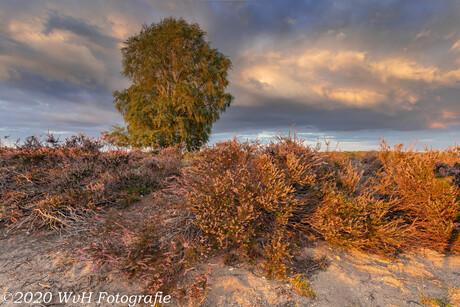 Posbank sunset