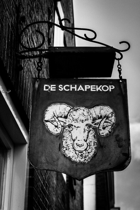 De Schapekop