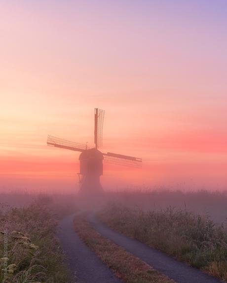 Misty Sunrise Streefkerk