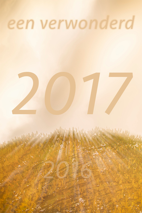 wens 2017