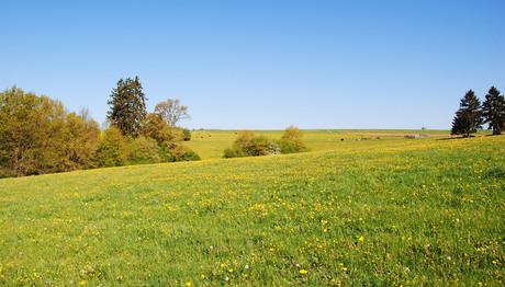 Belgisch landschap