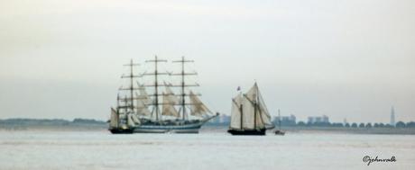 schilderij van sail-in Vlissingen