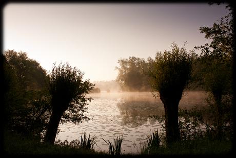 Vroege ochtend aan de vijver