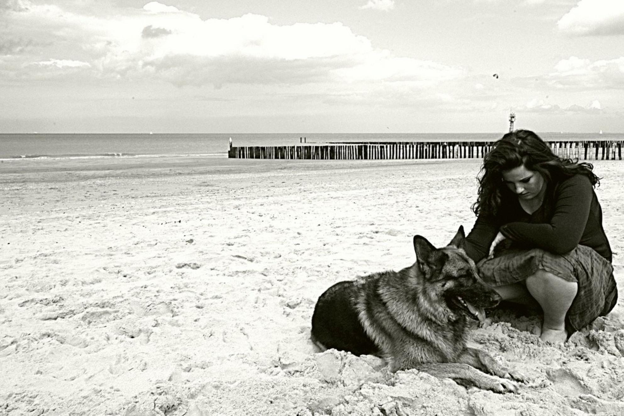 even aandacht voor de hond - even wat sepia - foto door paulwaterreus op 03-01-2009 - deze foto bevat: strand, hond