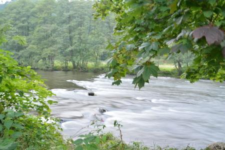 Ambleve 2 - Heerlijk fris stromend water in de Ardennen - foto door Walwies op 14-09-2014 - deze foto bevat: rivier