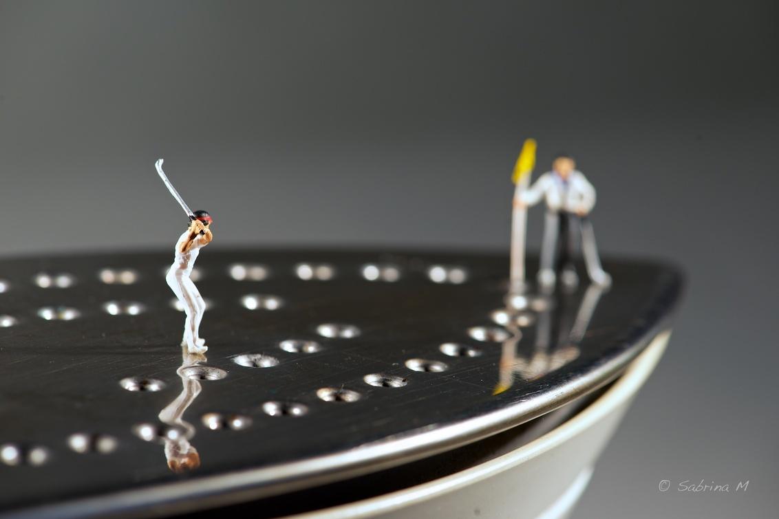 Golf iron - Een veel leukere manier om het ijzer te gebruiken is deze die Guido en Joyce demonstreren. - foto door sabbe op 15-01-2016 - deze foto bevat: miniatuur, mini, figuurtje, preiser, Teenyweenies, SabrinaM