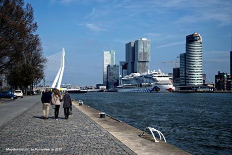 Maasboulevaard Rotterdam 2017_DSC1623