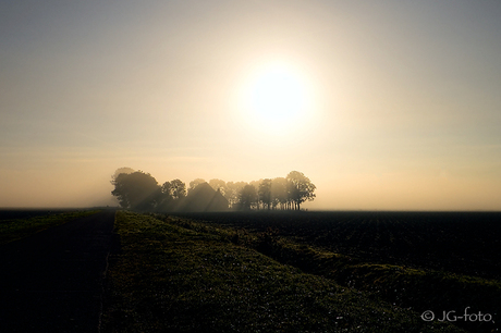 Boerderij in de mist