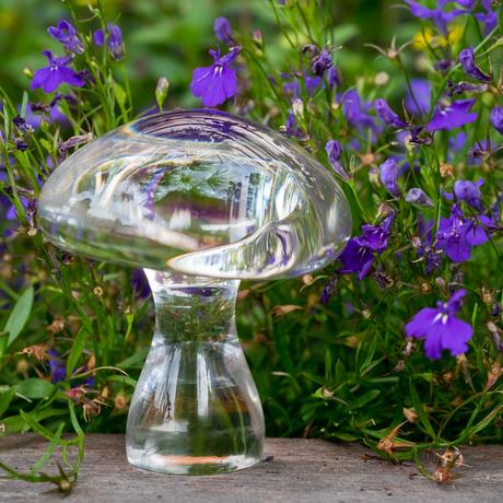 Glass_scenes001