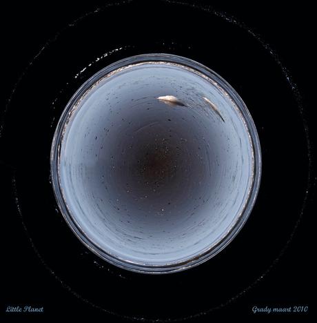 little(aqua)planet