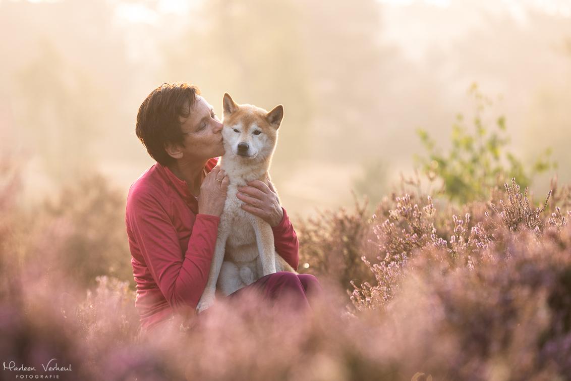 Liefde tussen baas en hond - - - foto door MarleenVerheulFotografie op 13-09-2020 - deze foto bevat: dieren, huisdier, hond, hondenfotografie, hondenfotograaf