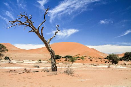 Namibie 33