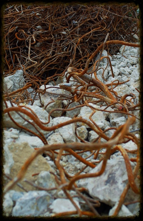 wormen van staal