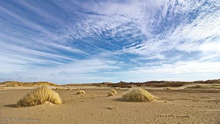 Van Limburg Stirumvallei - Eerste probeersel met de nieuwe ultragroothoek (10-18mm) in de Van Limburg Stirum Vallei, Amsterdamse WaterleidingDuinen - foto door yemrev op 09-03-2015 - deze foto bevat: wolken, lente, natuur, landschap, duinen, zand