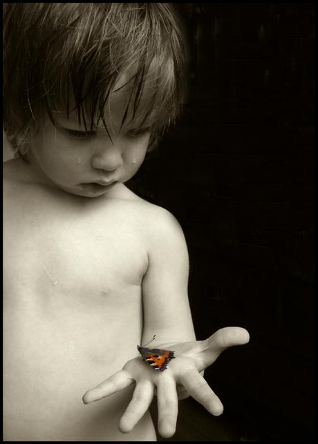 Vlinder is dood # 2