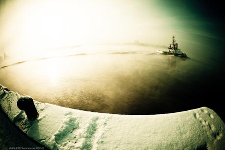 Aan de oevers van de Schelde...