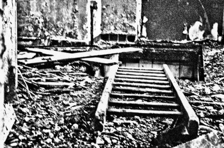 Eerste zwart wit experiment - DSC_0027_Detail.jpg - foto door bsmidt op 17-03-2014