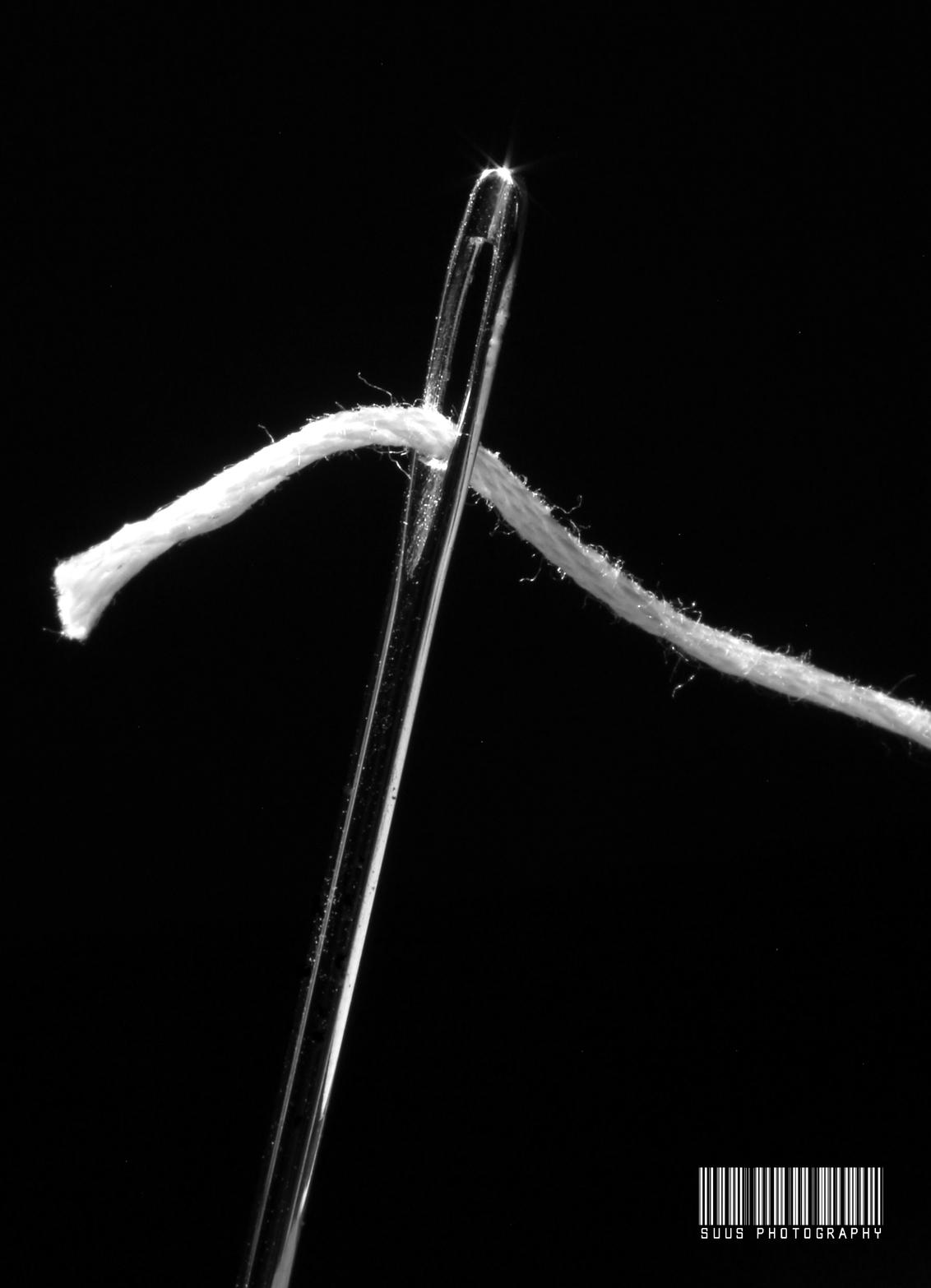 Voor elke naald een draad hebben - - - foto door susannekim op 04-01-2021 - deze foto bevat: macro, draad, naald
