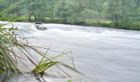 Ambleve - stromend water in de Ambleve - foto door Walwies op 14-09-2014 - deze foto bevat: rivier