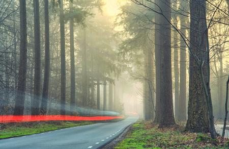 Foutje bedankt - Geheel per ongeluk kwamen deze autolichten in de deze foto. Misschien was de foto te saai zonder de rode swoosh. a Happy little accident zoals Bob zo - foto door pslagmolen op 28-02-2021 - deze foto bevat: rood, panorama, natuur, veluwe, licht, landschap, mist, bos, auto, zonsopkomst, bomen, nederland, speulderbos, lange sluitertijd