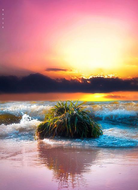 Caribbean glow