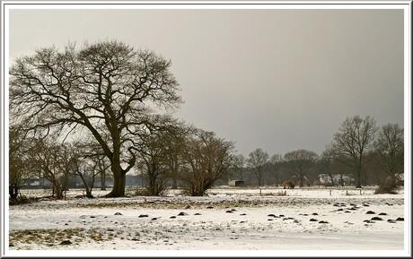 Maartse Sneeuw over het Land